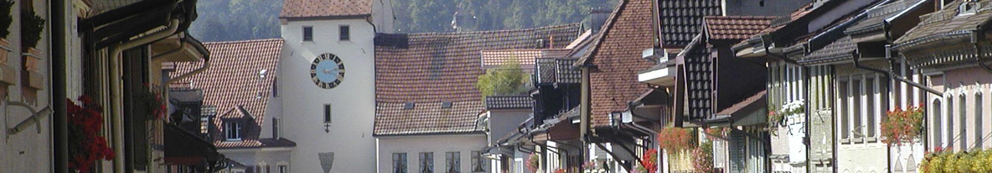 Referenzbericht Stadt Waldshut-Tiengen